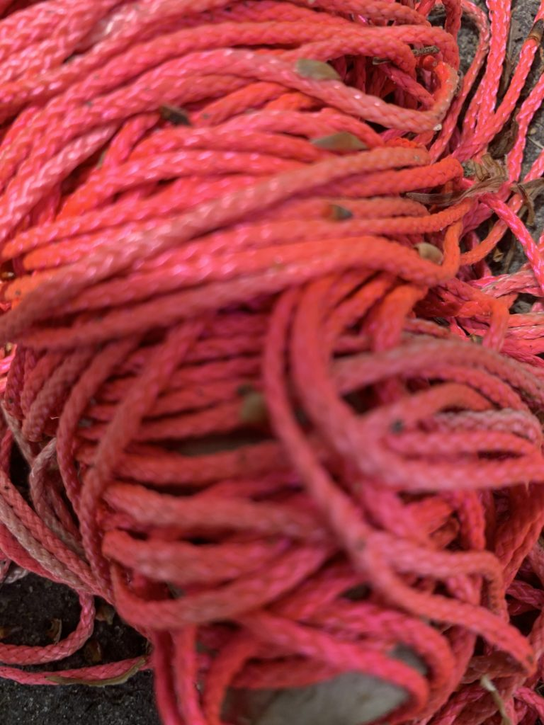 Pink string for collage